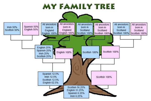spanish family tree project example