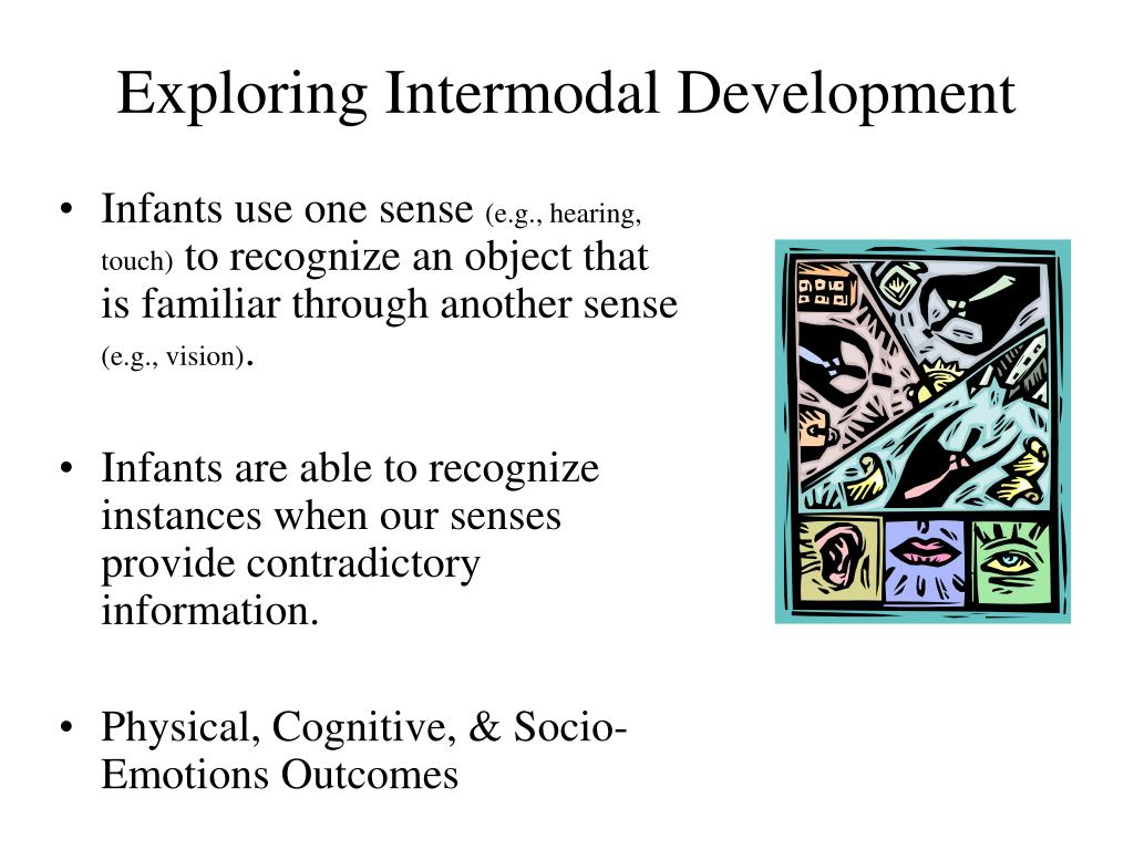 intermodal perception in infants example