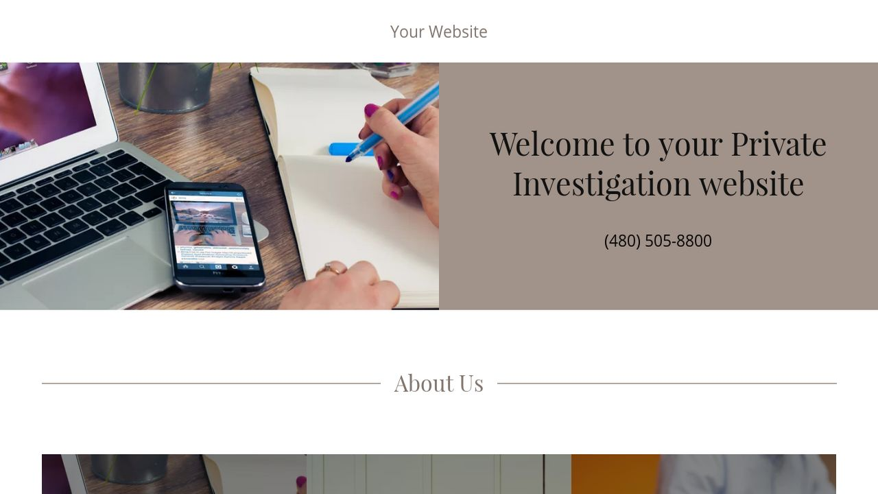 example of private investigator reports