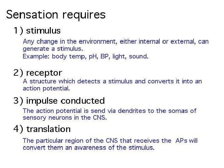 what is example of sensory adaptation
