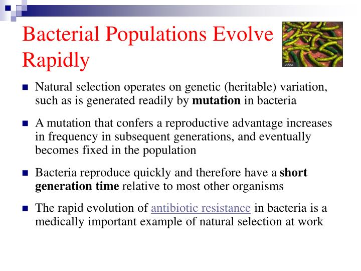 how is antibiotic resistance an example of natural selection