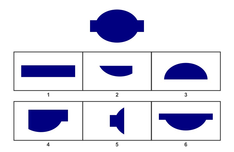 example of wisc-v matrix reasoning