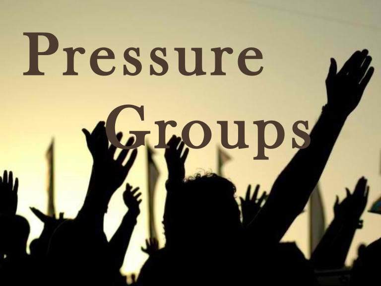 a special interest group example