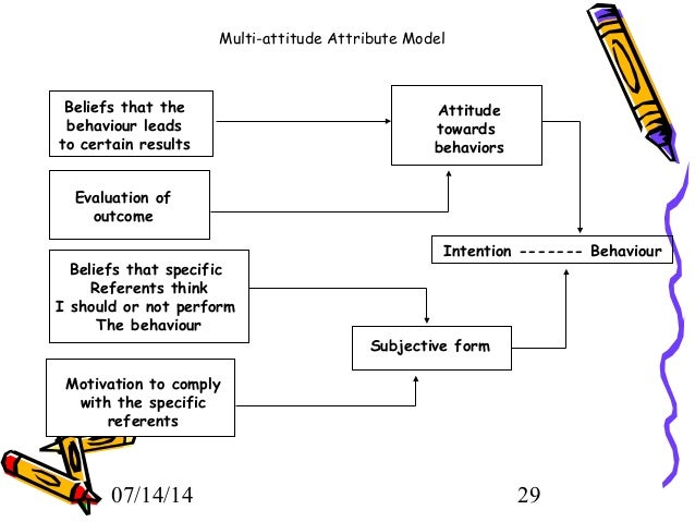 multi attitude attribute model example tora