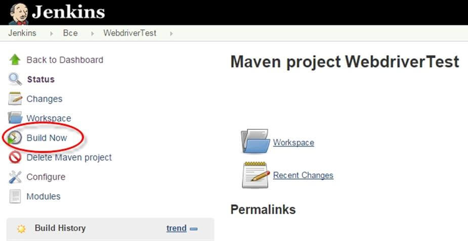 selenium webdriver live project example